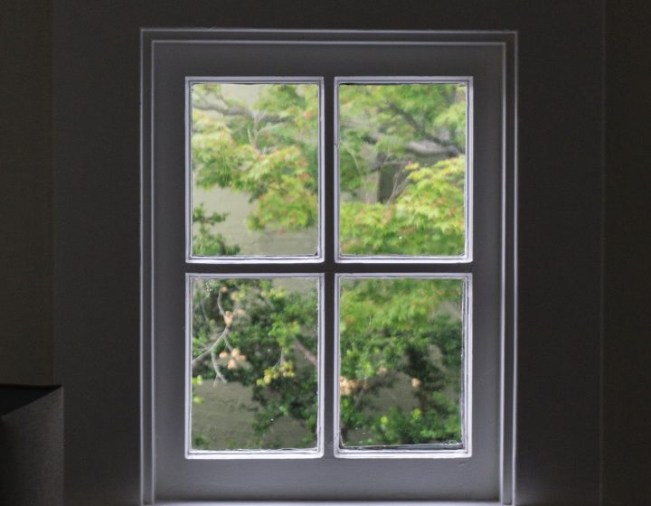 A window with a white frame in a dark room that looks out on lush green plants.