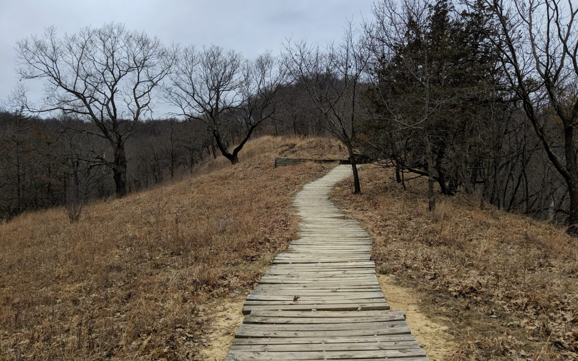 Brown wooden pathway under an overcast sky in a slightly barren season with brown grass and leafless trees.